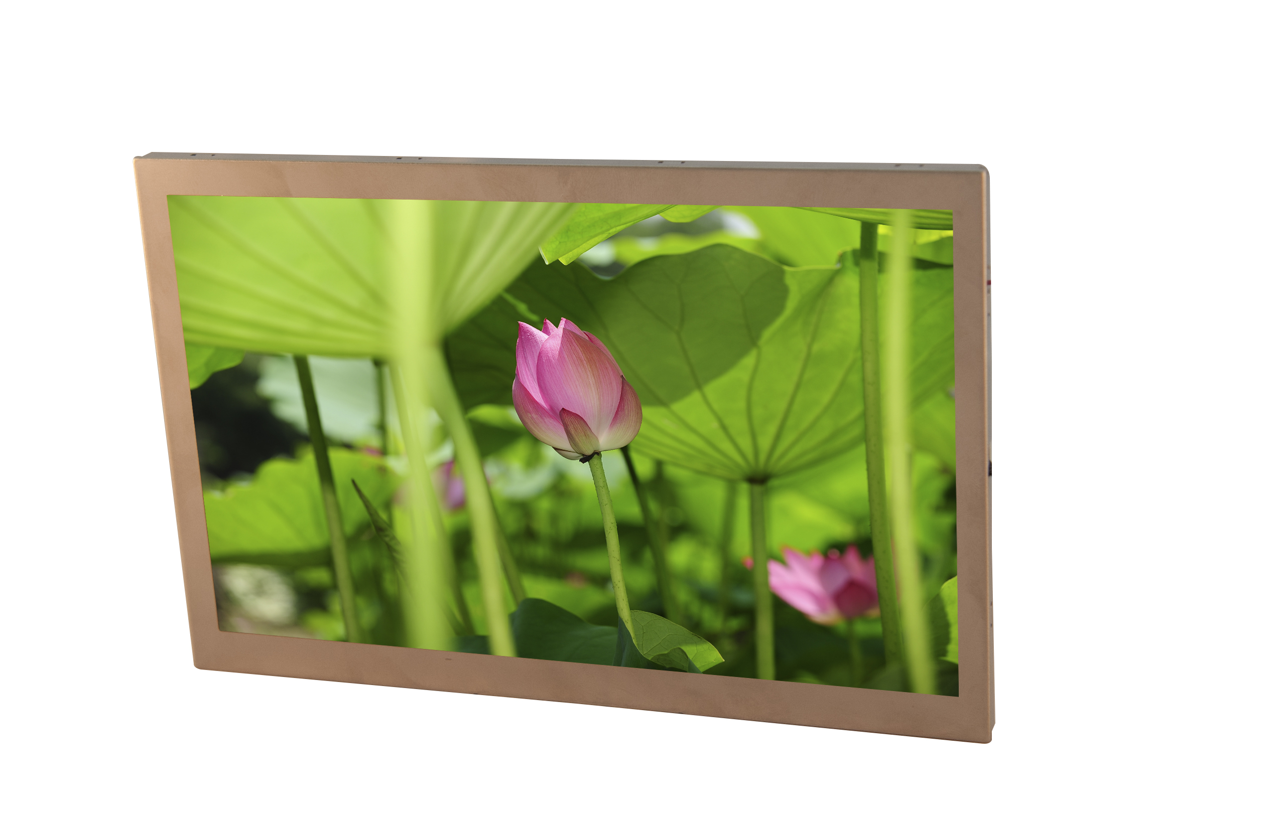 Choosing a TFT LCD Display Module article image